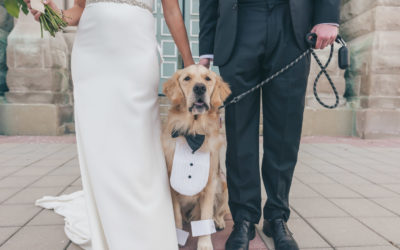 Yes, Your Dog can Participate in Your Wedding